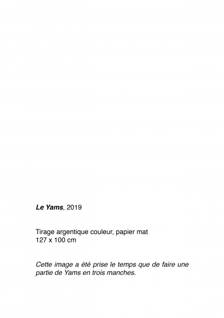 http://www.anaiscastaings.com/files/gimgs/th-47_texte3.jpg